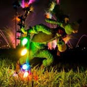 holiday-illuminations-disney-world-fireworks-photo
