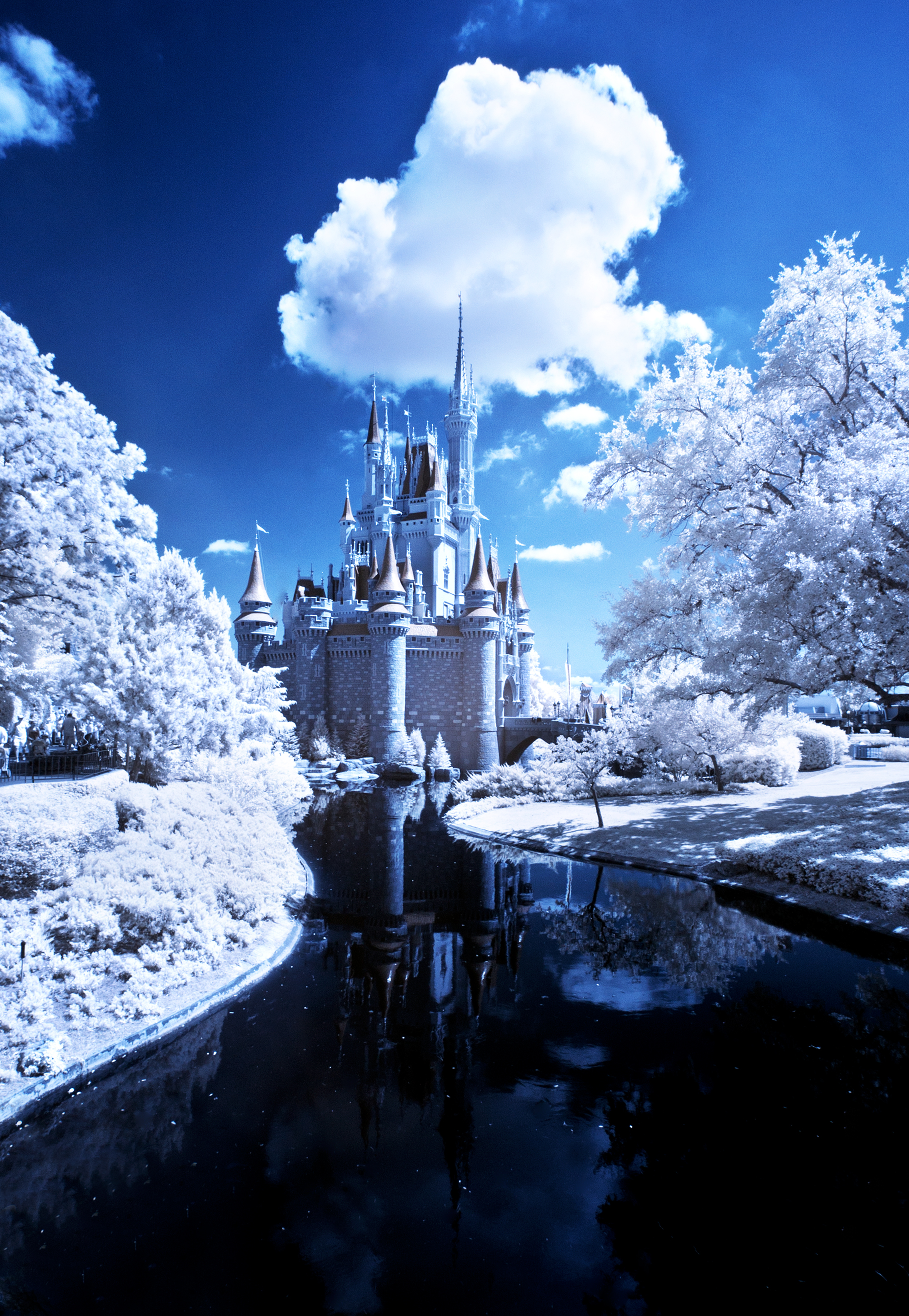Cinderella Castle Infrared Photo Disney Tourist Blog
