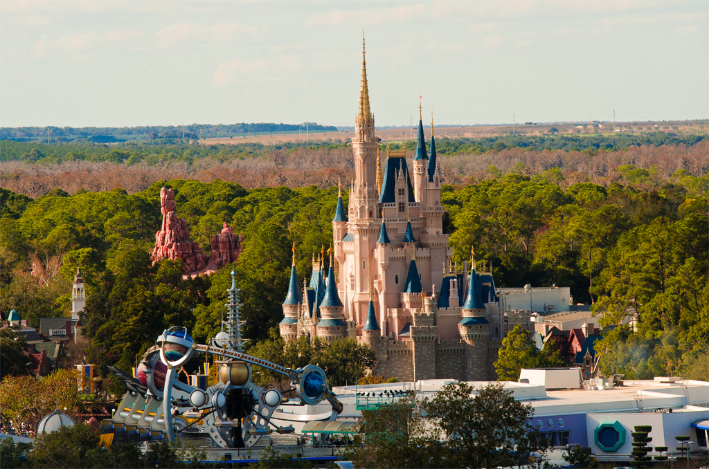 Cinderella Castle From Air - Walt Disney World Photo