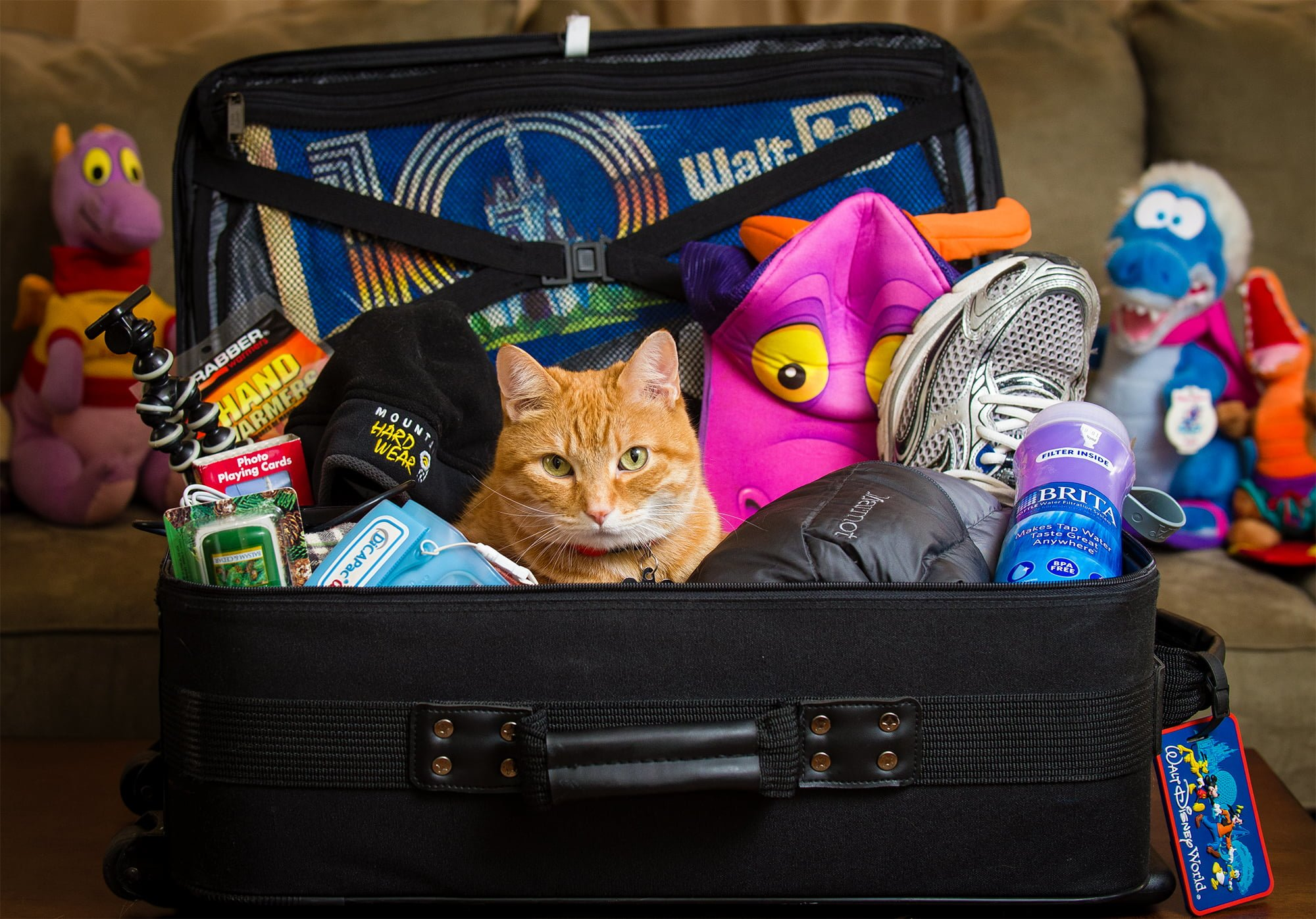 A great packing list for Disney with unique items you probably wouldn't consider!
