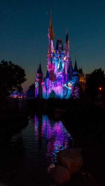 walt-disney-world-spring-040