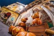 duffy-gelatoni-pumpkins-fisheye-tokyo-disneysea-2-M