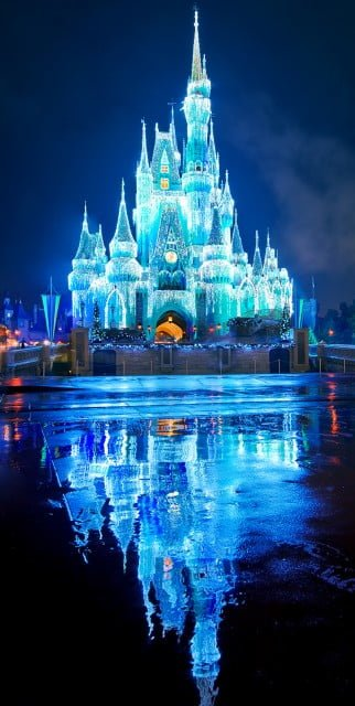 cinderella-castle-christmas-lights-bricker copy