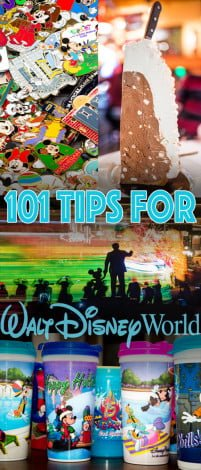 101-great-disney-world-tips