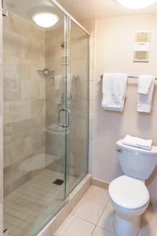buena-vista-palace-shower