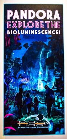 avatar-disney-world-pandora-animal-kingdom-178