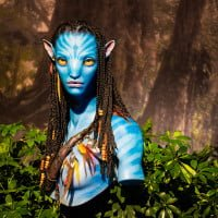 avatar-disney-world-pandora-animal-kingdom-186