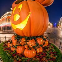 mickey-mouse-pumpkin-portrait