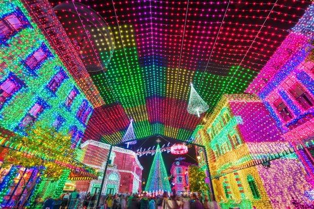 osborne-lights-canopy-wide copy