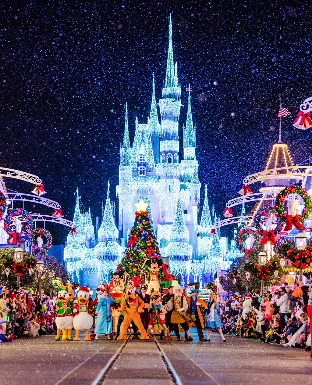 Step-by-Step Guide to Planning a Disney World Vacation