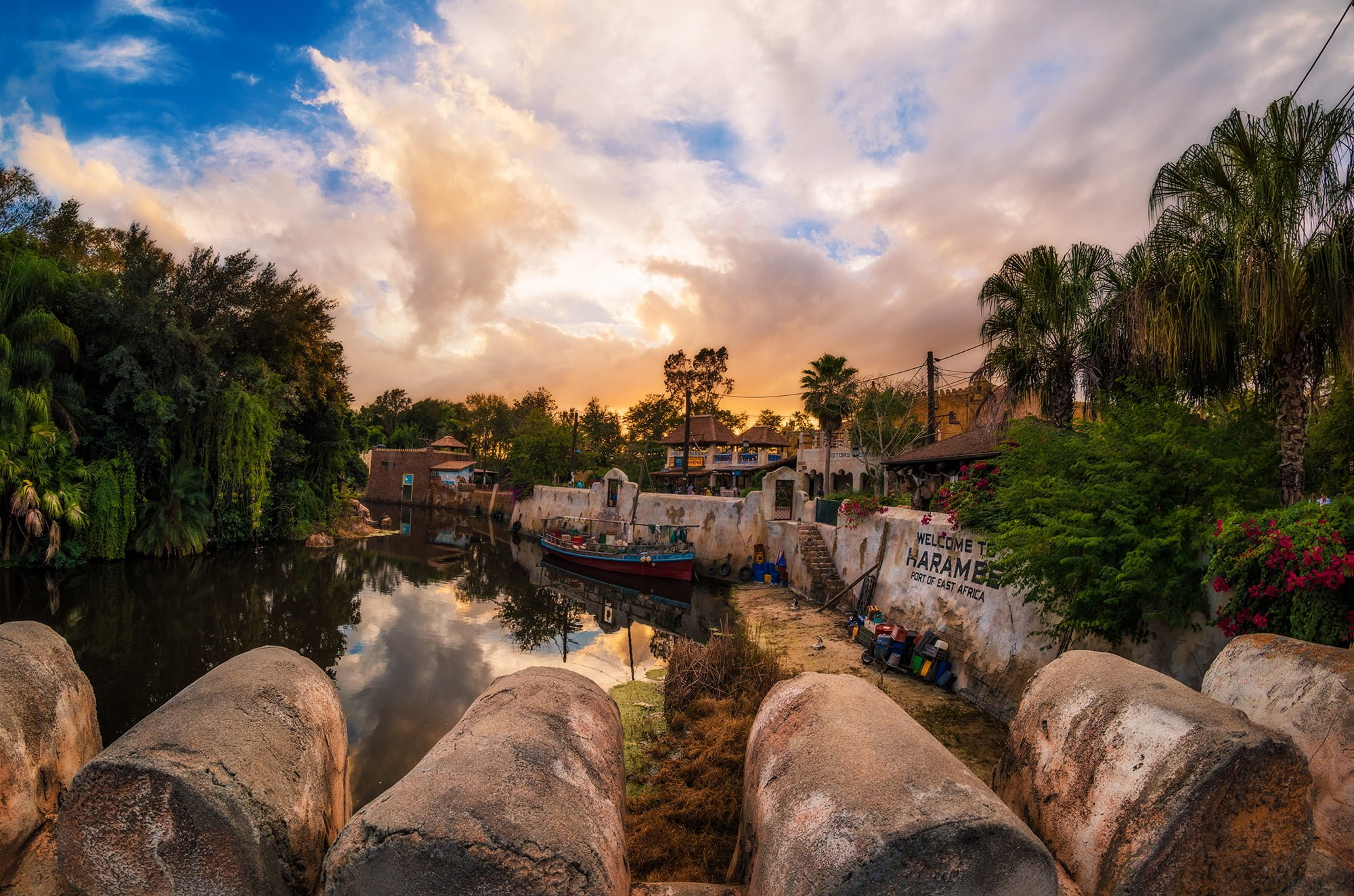 2016: Animal Kingdom's Coming Out Party - Disney Tourist Blog