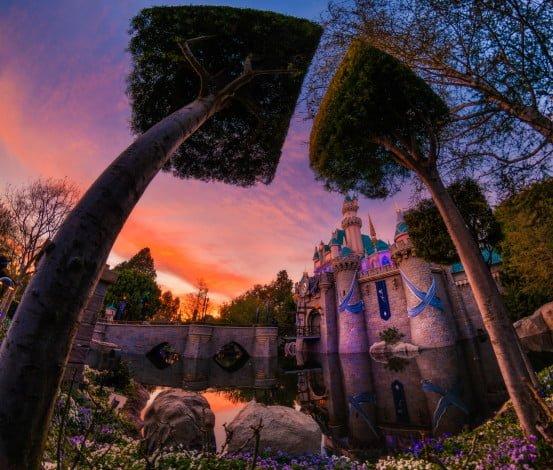 sleeping-beauty-castle-trees-fisheye-square-sony-a7rii_1