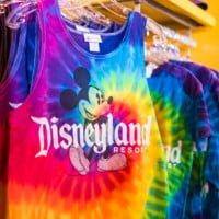 disneyland-merchandise-bricker-014