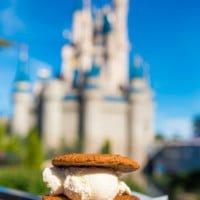 ice-cream-cookie-sandwich-disney-world-026