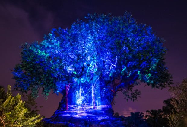 tree-life-awakenings-animal-kingdom-walt-disney-world-016