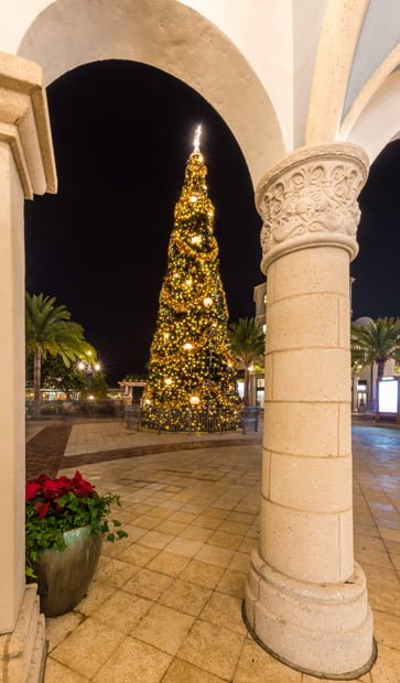 Tips for christmas at disney springs tourist