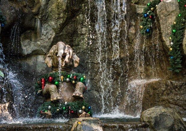 jingle-cruise-disneyland-christmas-016