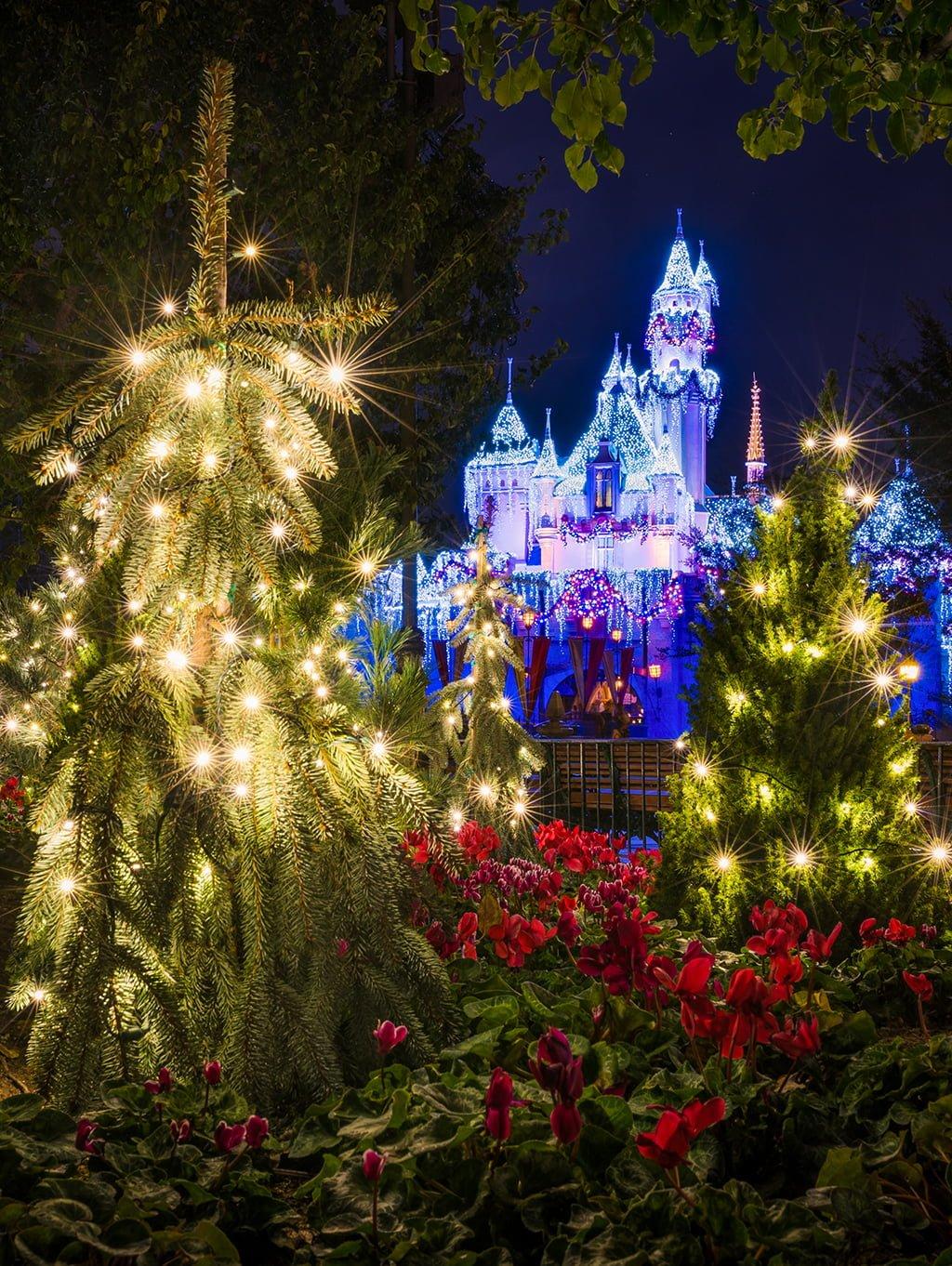 2016 Christmas at Disneyland Update - Disney Tourist Blog